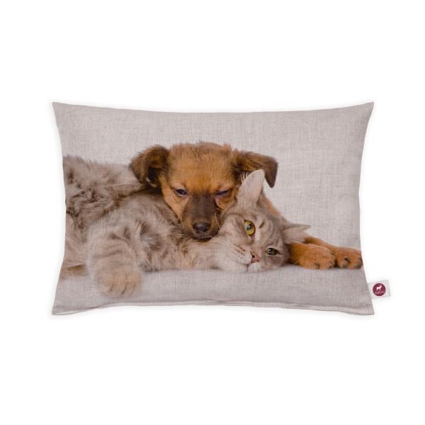 Motivkissen 30x20cm - Hund und Katze